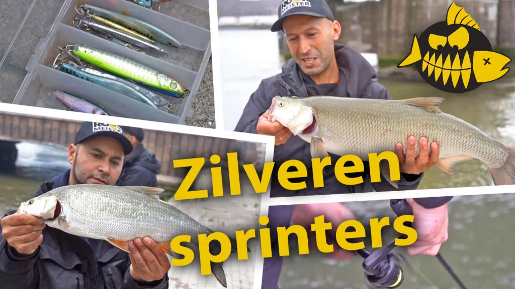 ***Roofmeister VIDEO*** Op roofblei met Mehmet & Mourat – Zilveren sprinters in Rotterdam