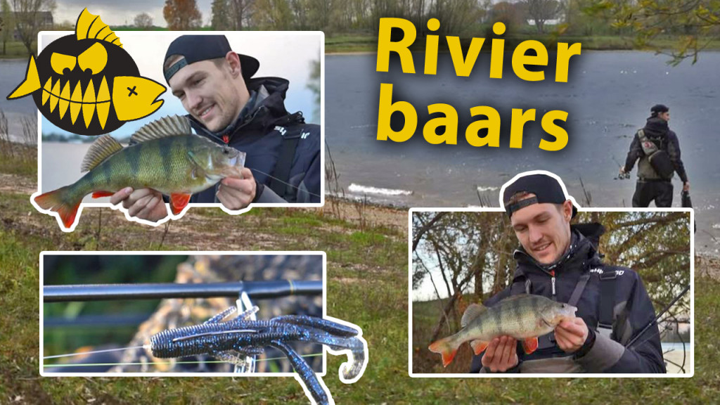 ***Roofmeister VIDEO*** Baars op rivierplassen met de C rig, lipless crank &  tube