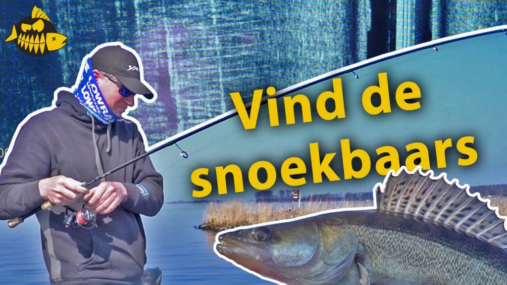 ***Roofmeister VIDEO*** Zo vind je snoekbaars met de fishfinder – Jan Boomsma kijkt onder water