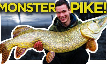 Engeland loopt achter bij het roofvissen