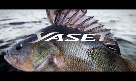 Yasei 2.0 – Hengels voor elke roofvisdiscipline