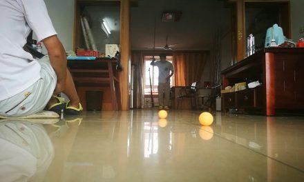 Ping Pong vissen