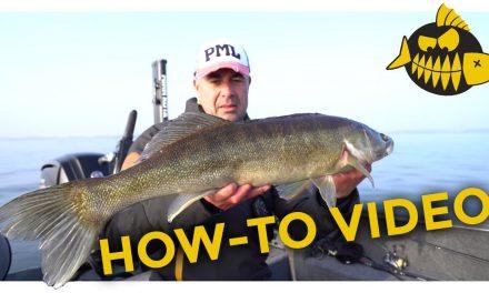Werpend vissen op baars met EVERT OOSTDAM – Video