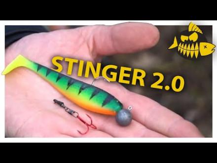 Stinger 2.0 met Camiel van Dijck – Raven Lelystad