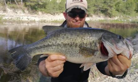 Alles over black bass – De visserij van A tot Z in Spanje
