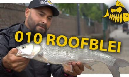 ***ROOFMEISTER VIDEO*** Roofblei in Rotjeknor met Mehmet Buyukyilmaz