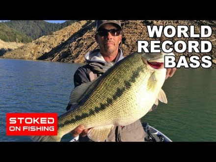 Wereldrecord black bass?