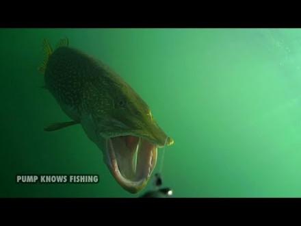 10 minuten aanbeten van snoek onder water