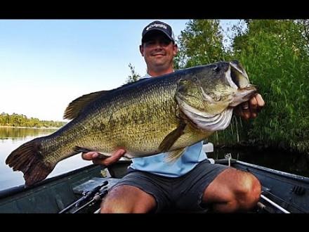50 spectaculaire oppervlakte aanbeten van black bass