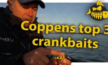 ***ROOFMEISTER VIDEO*** De top 3 crankbaits van Luc Coppens