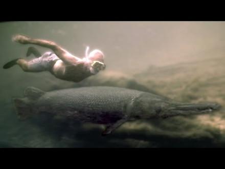 Jeremy Wade zwemt met alligator gar