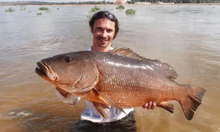 Visreis VIDEO – Op grof wild voor de kust van Angola