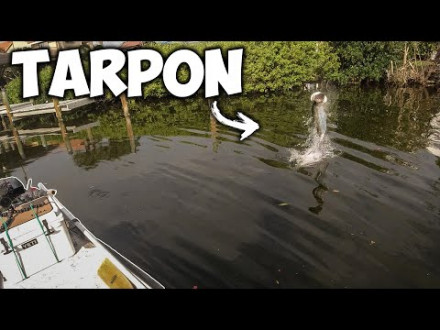 First Person Shooter – Los op tarpon in de haven
