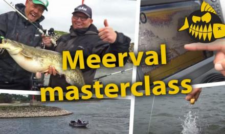 ***Roofmeister VIDEO*** Meerval masterclass met specialist Roy Noom