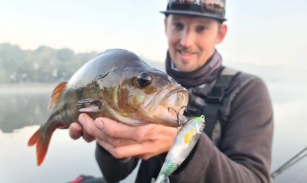 Met topwaters op baars –  River2Sea Whopper Plopper
