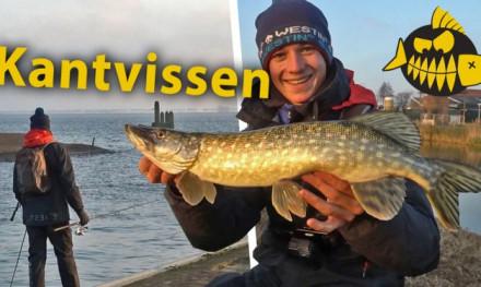 ***Roofmeister VIDEO*** Topstekken vanaf de kant – Streetfishing in Hellevoetsluis