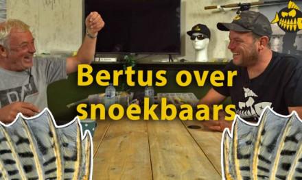 De geschiedenis van het vissen op snoekbaars – In gesprek met Bertus Rozemeijer