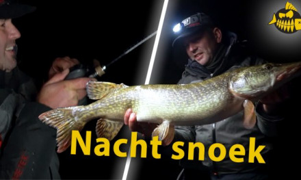 ***Roofmeister VIDEO*** Pelagisch achter de monstersnoeken aan – Sharpshooting met The Eagle