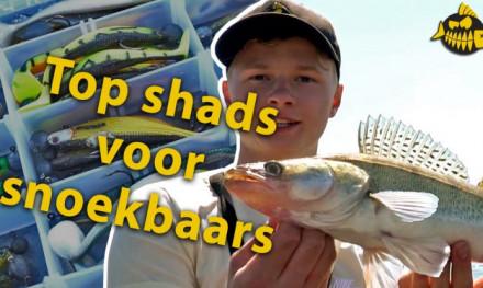 VIDEO: Top 3 shads voor snoekbaars – Robert Mastbergen van Wesdijk