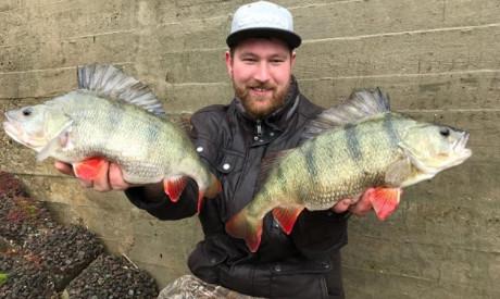 5 tips voor voorjaarsroofvis op het ondiepe – Rick Barten