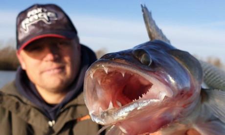 ROOFMEISTER INSIDE – De Carolina rig en ruim 40 actuele vangstfoto's!!