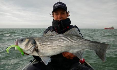 Nieuwe killer voor zeebaars – Door en door getest door Daniël van der Post