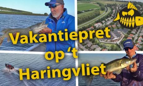 ***Roofmeister VIDEO*** Snoek en snoekbaars op 't Haringvliet – Visvakantie in eigen land