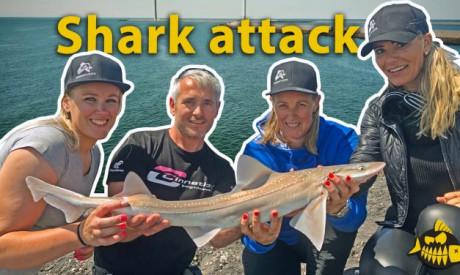 ***Roofmeister VIDEO*** Met vrouwen op haai vissen in Nederland – De Barracuda's & JAWS