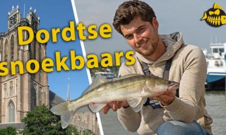 ***Roofmeister VIDEO*** Zo zoekt Luc de Groot goede kantstekken voor snoekbaars – Streetfishing Dordrecht