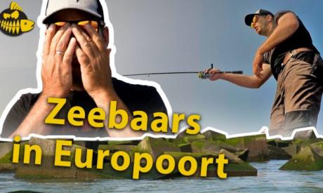 ***Roofmeister VIDEO*** Arend haakt MEGA zeebaars – werpend met pluggen in de Europoort